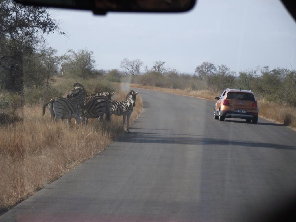 A zebra crossin :)