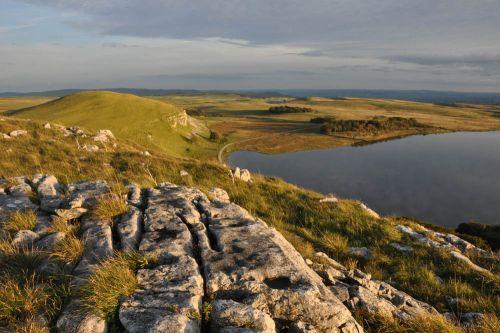 Malham Tarn is a pretty idyllic spot for water voles