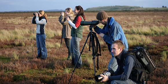 Could citizen science like this be the way forward?